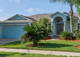 Foreclosed Home in Lutz 33559 PEACE PIPE CT - Property ID: 4272008597