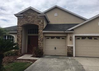 Foreclosed Home in Odessa 33556 NIKKI LN - Property ID: 4276300749