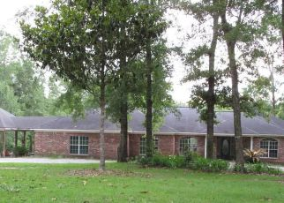 Foreclosed Home in Grand Bay 36541 FRANKLIN CREEK CT - Property ID: 4279003925