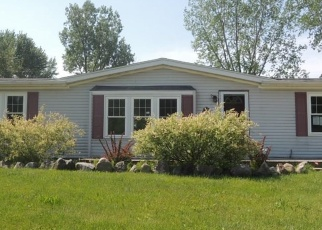 Foreclosed Home in Saint Clair 48079 NEUMAN RD - Property ID: 4280919166
