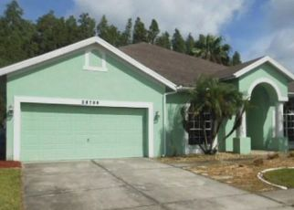 Foreclosed Home in Wesley Chapel 33543 FALLING LEAVES WAY - Property ID: 4286973738
