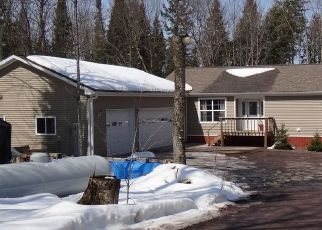 Foreclosed Home in Lake Linden 49945 KEWEENAW PASS RD - Property ID: 4287167310