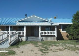 Foreclosed Home in Mc Intosh 87032 ROBERT DR - Property ID: 4295802858