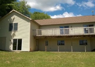 Foreclosed Home in White Cloud 49349 W BRANDT ST - Property ID: 4297138670