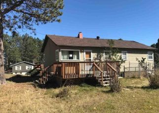 Foreclosed Home in Custer 57730 N 4TH ST - Property ID: 4297423797