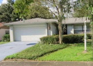 Foreclosed Home in Brandon 33511 PADDLEWHEEL DR - Property ID: 4297750965
