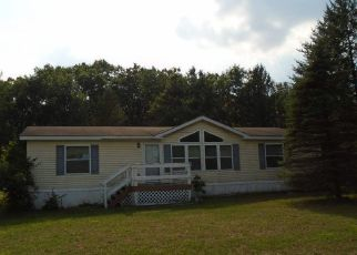 Foreclosed Home in Grand Marsh 53936 10TH CT - Property ID: 4299239631