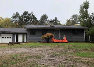Foreclosed Home in Woodruff 54568 HIGHWAY J - Property ID: 4299241828