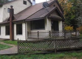 Foreclosed Home in Conover 54519 CHICAGO AVE - Property ID: 4299314977