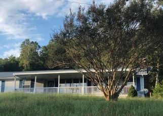 Foreclosed Home in Luttrell 37779 TEXAS HOLLOW RD - Property ID: 4299956143