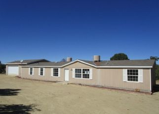 Foreclosed Home in Flora Vista 87415 ROAD 3562 - Property ID: 4300754581
