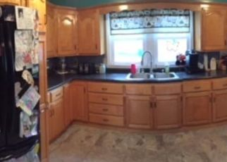Foreclosed Home in Litchfield 55355 S HOLCOMBE AVE - Property ID: 4301206127
