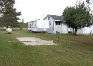 Foreclosed Home in Mesick 49668 CLYDE RD - Property ID: 4301403213