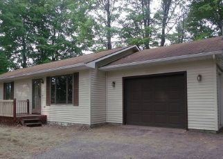 Foreclosed Home in Alanson 49706 BANWELL RD - Property ID: 4301488631
