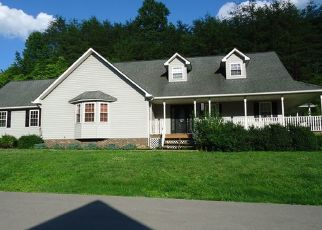 Foreclosed Home in Staffordsville 41256 FRANK ST - Property ID: 4301568334