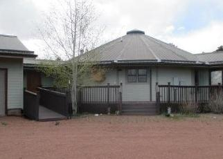 Foreclosed Home in Canon City 81212 ROSEBUSH RD - Property ID: 4302577876