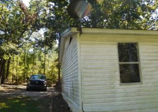Foreclosed Home in Remlap 35133 KIOWA RD - Property ID: 4303278178