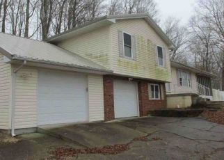 Foreclosed Home in Gallipolis 45631 WHITE RD - Property ID: 4303646975