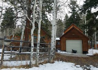Foreclosed Home in Ridgway 81432 ASPEN DR - Property ID: 4304459404