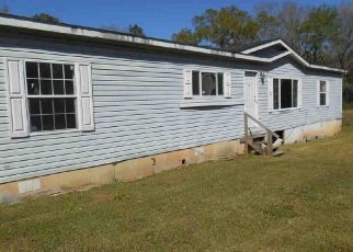 Foreclosed Home in Grand Bay 36541 OAK ST - Property ID: 4304502769