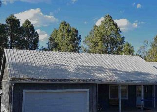 Foreclosed Home in Ruidoso 88345 SPRING RD - Property ID: 4304974458