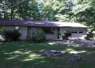 Foreclosed Home in Lake Leelanau 49653 E KIRT RD - Property ID: 4305029197
