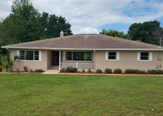 Foreclosed Home in Inverness 34450 E SANDPIPER DR - Property ID: 4305435203