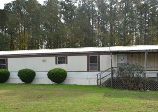 Foreclosed Home in Mathews 23109 MARSH HAWK RD - Property ID: 4307262436