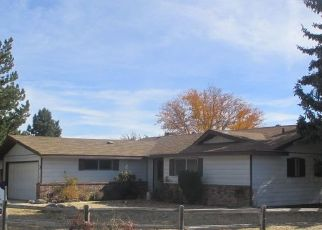 Foreclosed Home in Sparks 89431 MICHELE WAY - Property ID: 4307444186