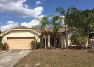 Foreclosed Home in Riverview 33569 WILDBROOK DR - Property ID: 4309270102