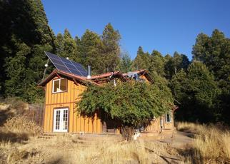 Foreclosed Home in Willits 95490 SKYVIEW RD - Property ID: 4310056269