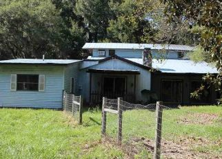 Foreclosed Home in Newberry 32669 SW 202ND ST - Property ID: 4311284800