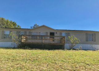 Foreclosed Home in Olive Hill 41164 SEAGRAVES HOLW - Property ID: 4313162826