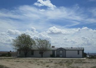 Foreclosed Home in Aztec 87410 ROAD 3143 - Property ID: 4313280645