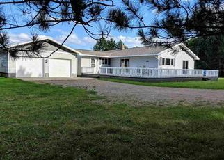 Foreclosed Home in Iron River 49935 BAUMGARTNER RD - Property ID: 4313350718