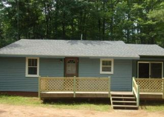 Foreclosed Home in Three Lakes 54562 DRURY LANE LOOP - Property ID: 4313679633