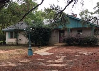 Foreclosed Home in Big Sandy 75755 WHITE OAK RD - Property ID: 4313734374