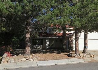 Foreclosed Home in Reno 89509 MEADOW SPRINGS DR - Property ID: 4318413244