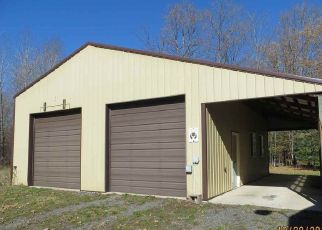 Foreclosed Home in Rock 49880 COUNTY ROAD 444 - Property ID: 4318635299