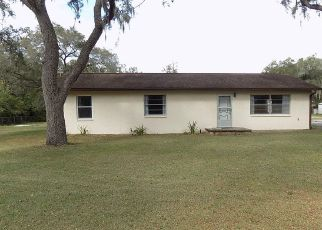 Foreclosed Home in Brooksville 34601 POINTVIEW RD - Property ID: 4320717884