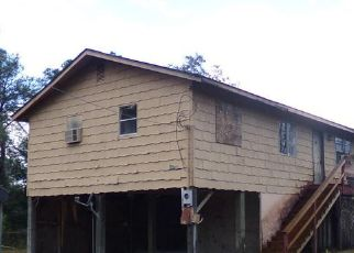 Foreclosed Home in Interlachen 32148 KITTY AVE - Property ID: 4320790128