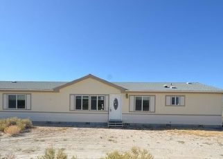 Foreclosed Home in Jean 89019 UTAH AVE - Property ID: 4321364768