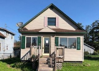 Foreclosed Home in Palmer 49871 KIRKPATRICK AVE - Property ID: 4321556596