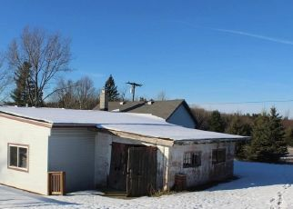 Foreclosed Home in Cadillac 49601 E 30 1/2 RD - Property ID: 4321599515