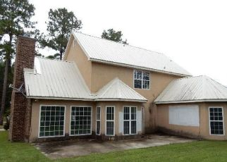Foreclosed Home in Townsend 31331 PELICAN LN SE - Property ID: 4322106693
