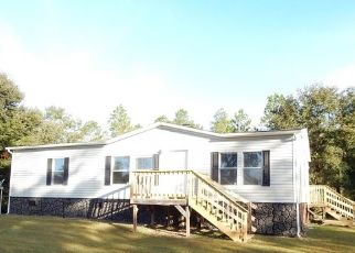 Foreclosed Home in Hortense 31543 LITTLE DUSTY TRL - Property ID: 4323861659