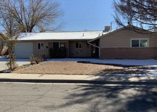 Foreclosed Home in Farmington 87402 TERRACE DR - Property ID: 4324970155