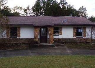 Foreclosed Home in Inverness 34452 E STEVENSON CT - Property ID: 4327167928
