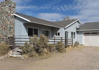 Foreclosed Home in Washoe Valley 89704 EASTLAKE BLVD - Property ID: 4328216876