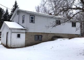 Foreclosed Home in Walker 56484 SAUTBINE RD NW - Property ID: 4328261990